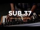 Sub 37 Analog Architecture