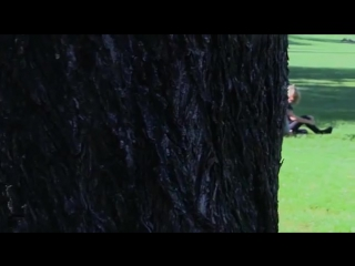 Палач / Виселица / Hangman (2016) [vk.com/newfilmsv]