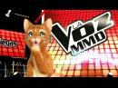 Кот поет «Roar» La Voz MMD Слепой прослушивание - YouTube