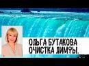 Очистка лимфы. Ольга Бутакова.