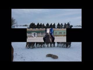 ШАХТИНСКИЙ коннО спортивный клуб