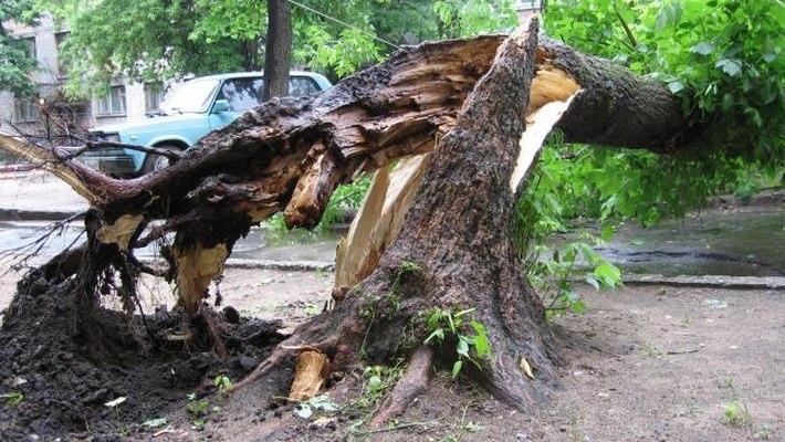 В Таганроге и Ростове из-за прогнозируемого ливня, града и ветра до 25м/c объявлено штормовое предупреждение!