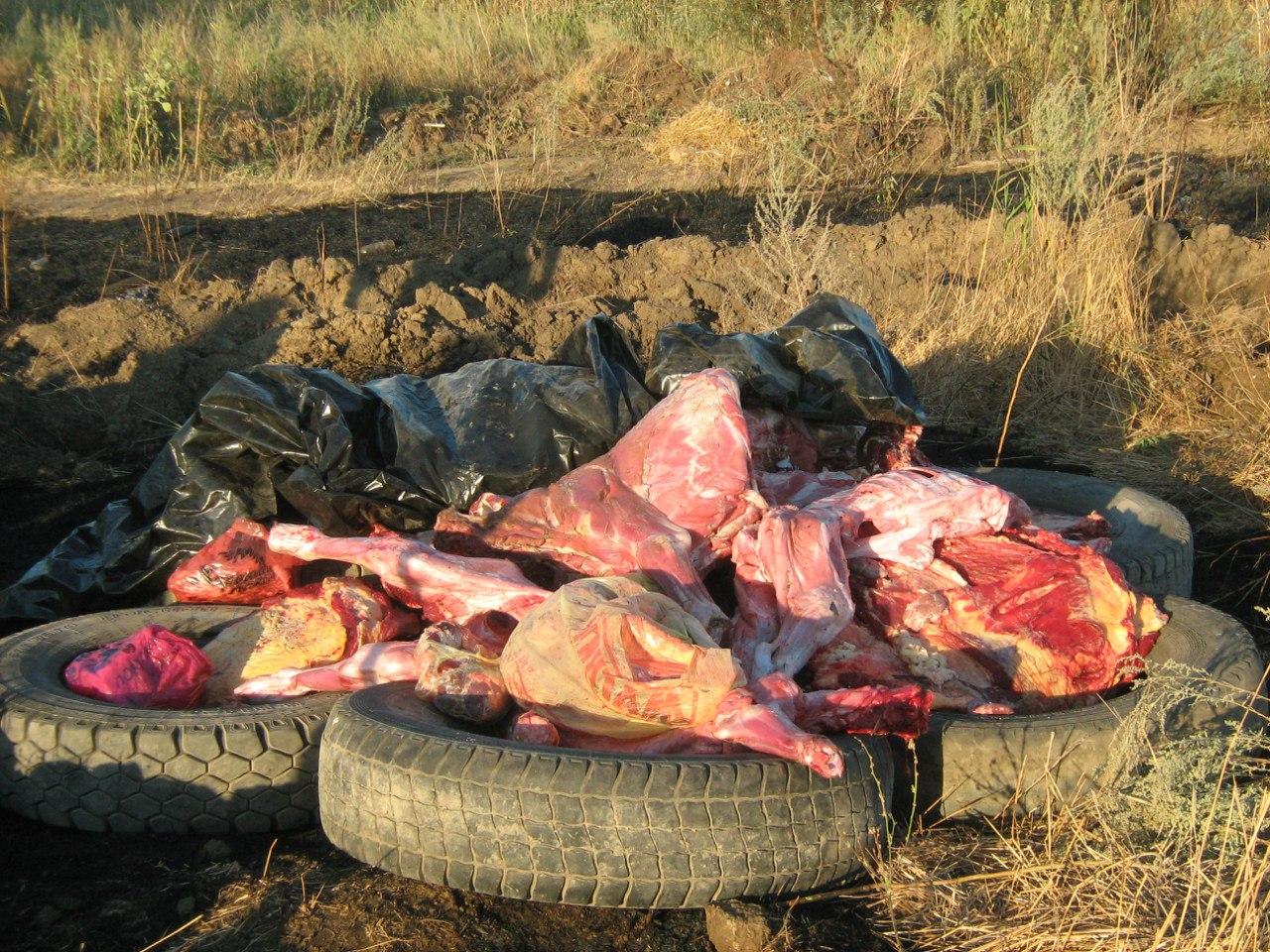 Ветеинспекторами Ростовской области с начала года задержано около 28 тонн нелегального мяса