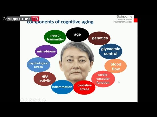 Влияние витаминов группы В на когнитивную деятельность