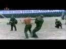 주체 격술 - Гёксуль Северной Кореи