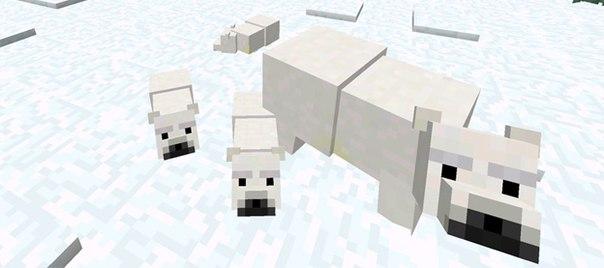 Мод Polar Bears для Minecraft PE
