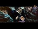 Интересные факты из фильмов о Гарри Потере | Квесты по Гарри Поттеру в Санкт-Петербурге