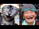 Смешное видео про людей до слёз смотреть бесплатно ютуб