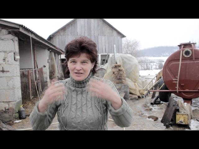 гумус с Онік Виноградів