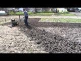 Фрезерование мотоблоком огорода перед посадкой картофеля
