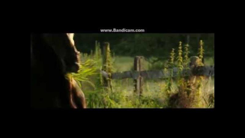 Ostwind 2 - Music video