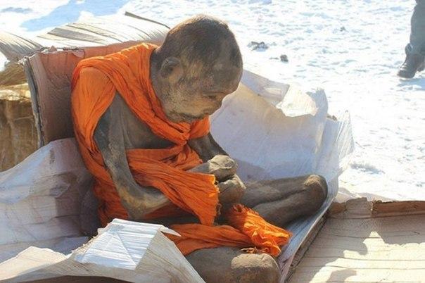 почему ученые считают, что мумия монаха жива 200-летняя мумия тибетского монаха находится на изучении в улан-баторе, и как полагают местные ученые монах «все еще жив». монах находится в