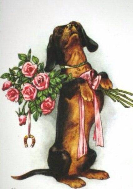 Лошадка, открытка с днем рождения с таксой