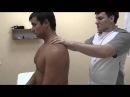 Лечение боли в шее Мануальная терапия кинезиология