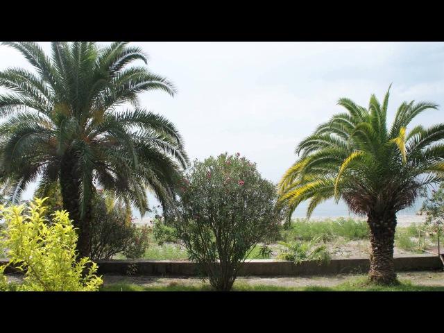 Новый Афон Святая земля. New Athos-holy land