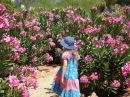 La ronde du printemps - Jacky Galou - Французский язык для детей