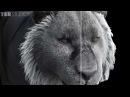 3D Hair and Fur VFX Demo Reel by Dexter Studios Zelos Fur RD