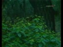 Тайна Эдвина Друда - музыка Э. Артемьева. Главная тема