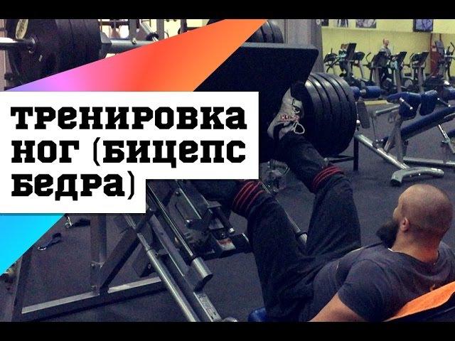 Тренировка ног бицепс бедра DarkFit nhtybhjdrf yju bwtgc tlhf darkfit