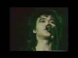 ✩ Группа крови Ленинград 5 фестиваль рок клуба 1987 год Виктор Цой Кино