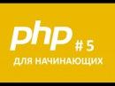 PHP Для начинающего Циклы Часть 5