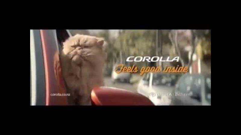 рыжий кот слушать онлайн
