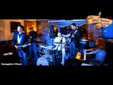 THE WILL JOHNS BAND -