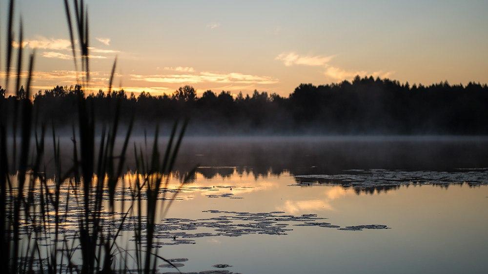 Русскую девушку имеют трое у озера рус портал