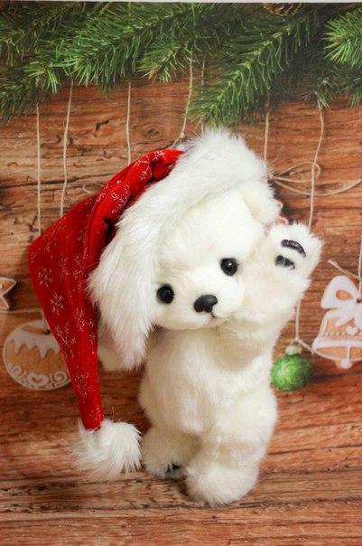 Мишка Алан готов к празднику