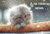 Елена Иванова, 17 февраля 1983, Москва, id73955079