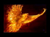 Phoenix Rising - Paul Dinletir