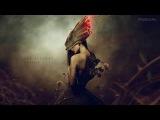 C21 FX - Blood Red Roses Lyrics - Epic Orchestral Vocal