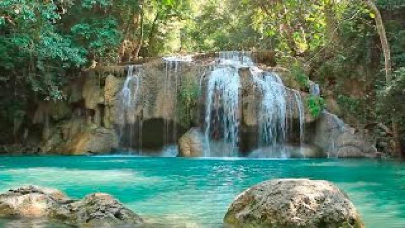 Calming Music: Nature Sounds, Zen Music