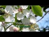 Караоке для детей - Песня Повара (Из кф