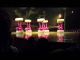 More Ants!!! Cirque du Soleil OVO