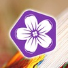 Цветное - клуб творчества и хобби
