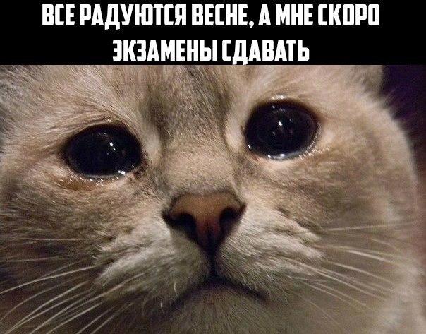 Настя Данилова   Тольятти