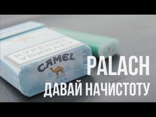 Palach - Давай начистоту (LIVE)