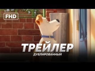 DUB | Трейлер №2: «Тайная жизнь домашних животных / The Secret Life of Pets» 2016