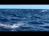 Эннио Морриконе!!! Ennio Morricone - Le vent le cri!!!