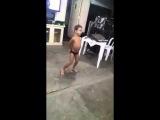 Garoto de 6 anos dançando Bang-Anitta (Abaixo De Zero)
