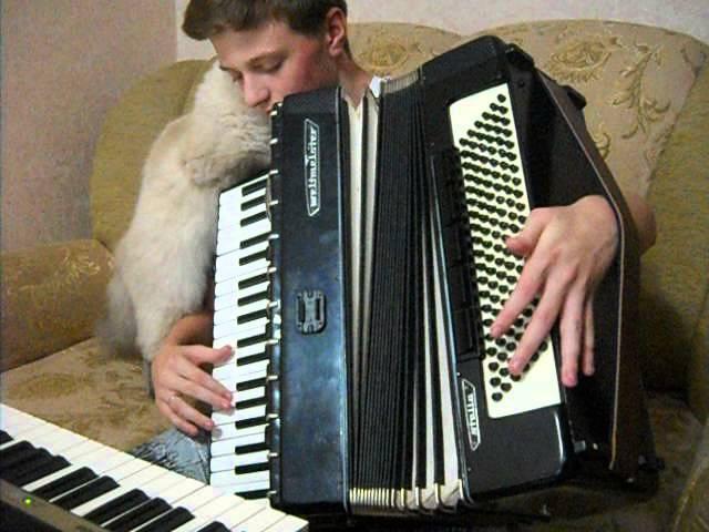 Cum pisica reactioneaza la melodii lautaresti :D