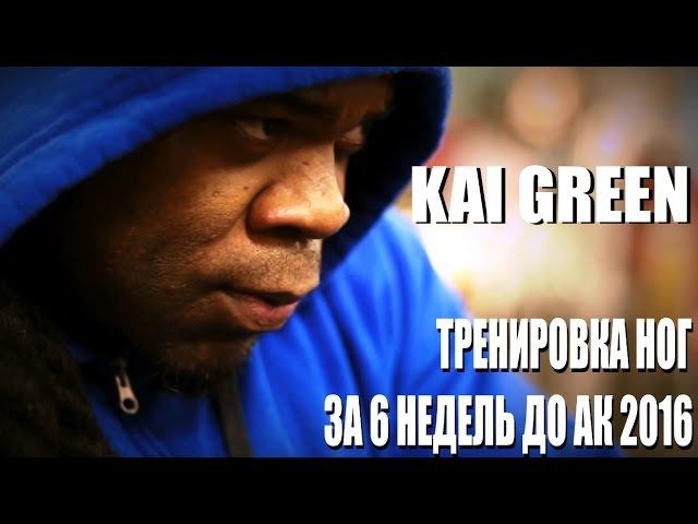 Кай Грин: ТРЕНИРОВКА НОГ за 6 недель до АК 2016 (Sportfaza)