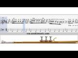 Соло для трубы ноты  - Вера Брежнева - Мамочка курсы игры на трубе