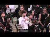 Йозеф Гайдн - Концерт для Трубы с оркестром Hob.VIIe1 25.01.2016 Н.Странатковский &amp МФСО СПб