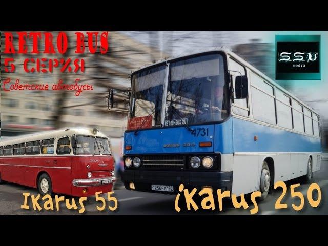 В лесу найден редкий Икарус 55 , Ikarus 55. Шоу Retro bus. Советские автобусы. 5 серия.