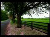Down By The Sally Gardens Irish songs Celtic music Ireland folk traditional Ireland
