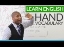 Learn English - Vocabulary and expressions about HANDS