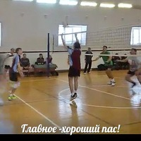 Radikovich