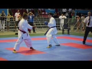 Кумитэ Копыл В.В. VII World Cup Karate